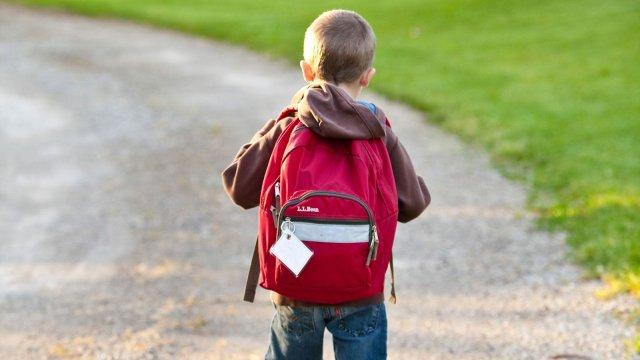 Mochilas Escolares - Inimigas da boa postura?